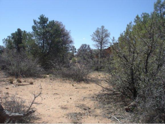 14480 N. Soza Mesa Ln., Prescott, AZ 86305 Photo 1
