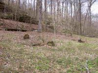 Home for sale: Lot 15, 16, 17 Slaughter Rd., Lewisburg, KY 42256