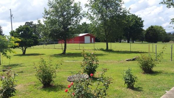 700 Cr 3536, Clarksville, AR 72830 Photo 23