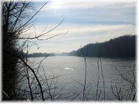 Home for sale: 4475 Ashland City Hwy., Nashville, TN 37218