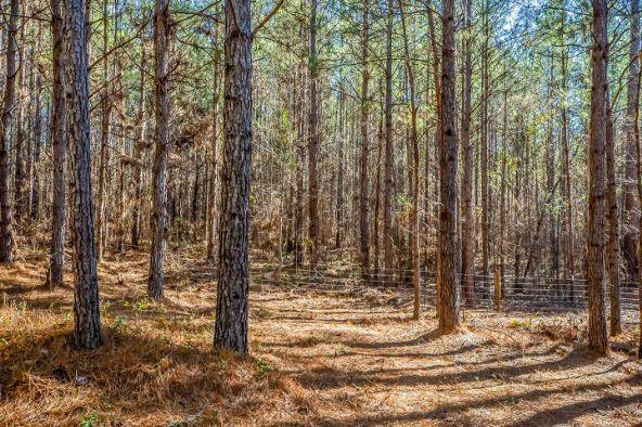 1227 Pine Rd., New Site, AL 36256 Photo 66