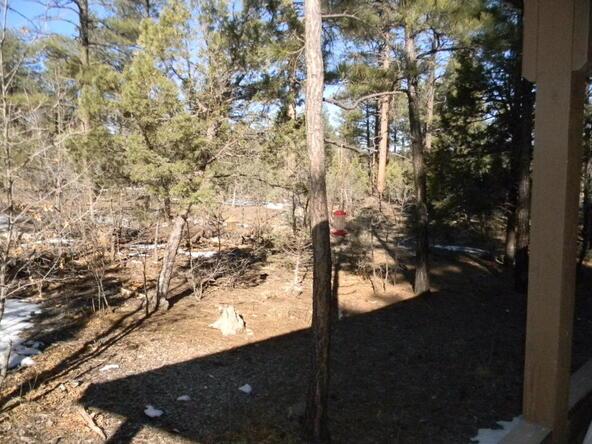 2800 S. Garretts Way, Show Low, AZ 85901 Photo 36