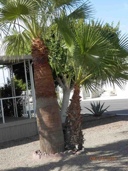 5707 E. 32 St., Yuma, AZ 85365 Photo 4