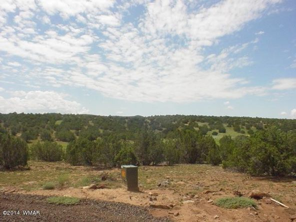 1a N. 8690, Concho, AZ 85924 Photo 55