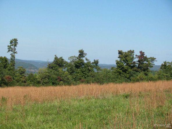 Smith Mountain Rd., 97 Acres, Jasper, AR 72628 Photo 3