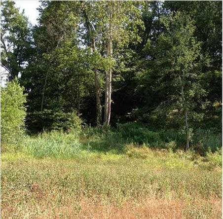 5791 Serenity Dr. Lot 14, Mount Vernon, IN 47620 Photo 31