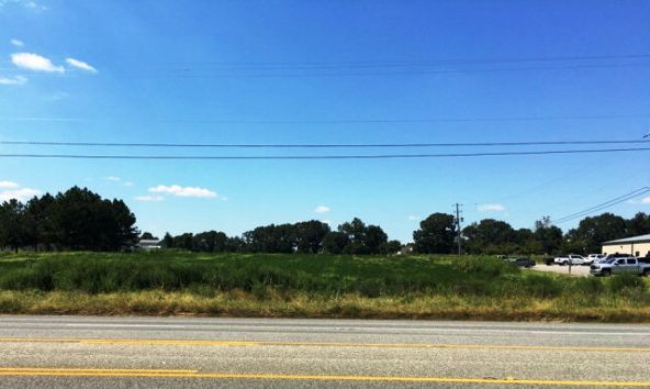 6.2 Acres Hartford Hwy., Dothan, AL 36305 Photo 7