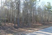 Home for sale: 12288 Bloomville, Manning, SC 29102