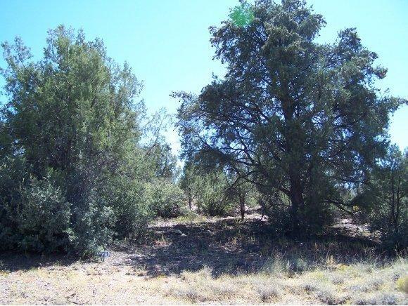5125 W. Almosta Ranch Rd., Prescott, AZ 86305 Photo 5