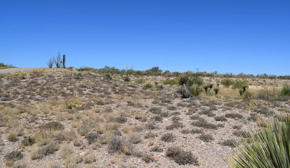 14411 E. Wood Canyon, Vail, AZ 85641 Photo 21