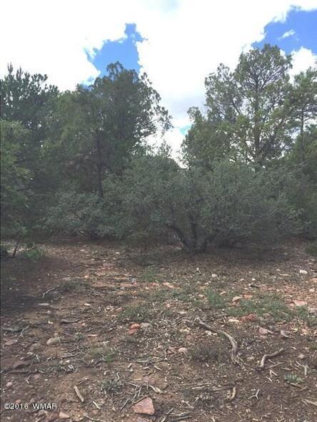 800 E. Pine Oaks Dr., Show Low, AZ 85901 Photo 5