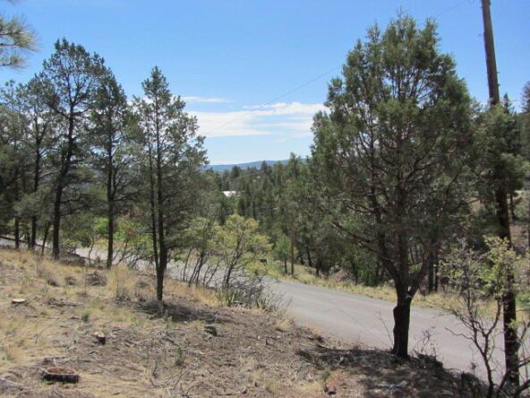 110 Chiracahua Ln., Ruidoso, NM 88345 Photo 16