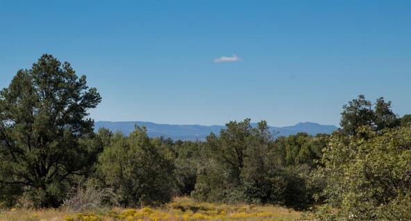 14425 N. Sandia Ln., Prescott, AZ 86305 Photo 21