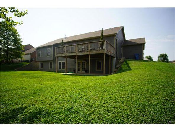 331 Lake Forest Dr., Belleville, IL 62220 Photo 45