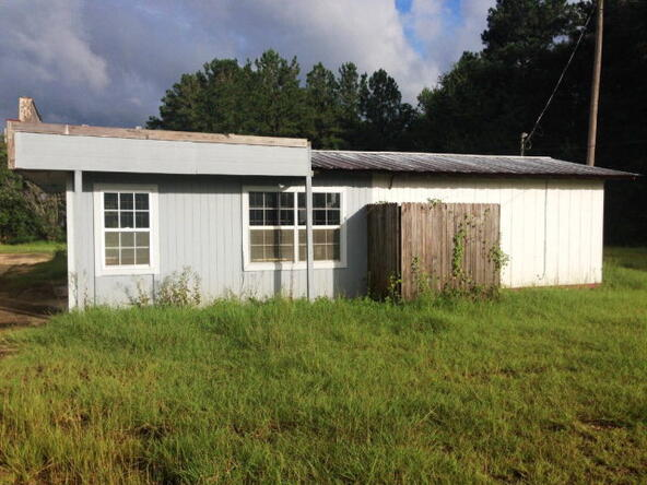 12204 South Us 231, Midland City, AL 36350 Photo 15