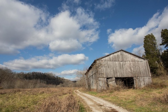 4417 Dry Branch Rd., Lexington, KY 40515 Photo 13