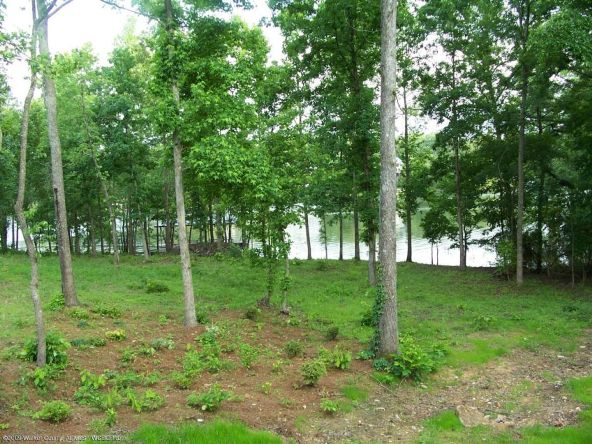 95 The Preserve Trail, Jasper, AL 35504 Photo 2