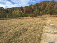 Home for sale: 155 Lakeshore Dr., Rainbow City, AL 35906