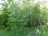 Home for sale: 8.45 Ac County Rd. Db, Mosinee, WI 54455