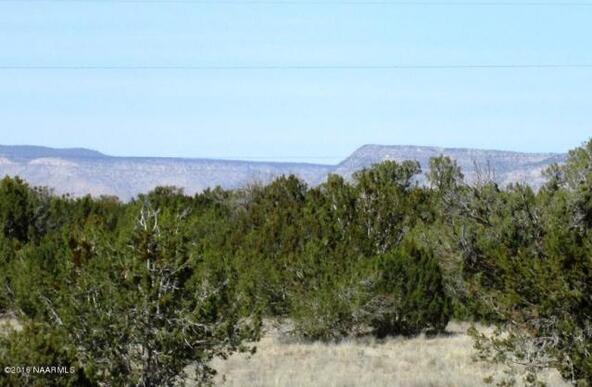 53805 N. Bridge Canyon Pkwy, Seligman, AZ 86337 Photo 4