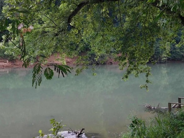 291 Heron Trail, Imboden, AR 72434 Photo 43