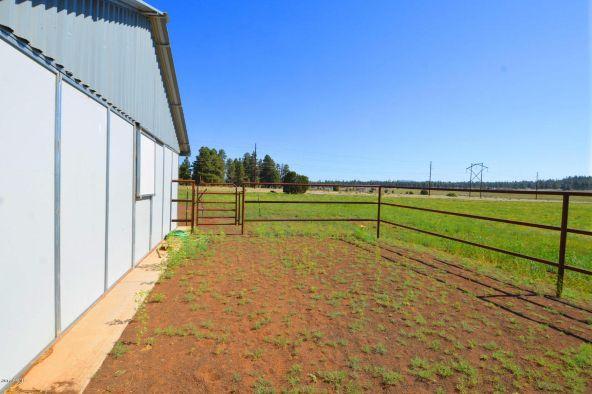 6701 N. Rain Valley Rd., Flagstaff, AZ 86004 Photo 20