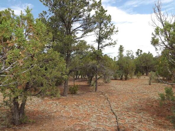 2374 Wildcat Cir., Overgaard, AZ 85933 Photo 9