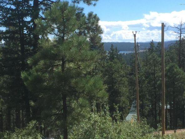 22 Cr 2074, Alpine, AZ 85920 Photo 10