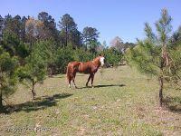 Home for sale: 1635 Pickard Rd., Sanford, NC 27330