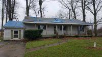 Home for sale: 2160 E. Fitchburg Rd., Stockbridge, MI 49285