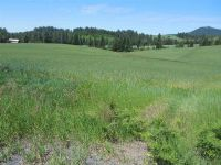 Home for sale: Tbd Drury Rd., Deary, ID 83823