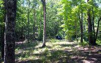 Home for sale: Chestnut Gap, Hayesville, NC 28904