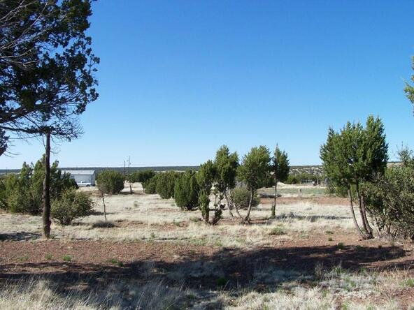 8482 Basalt Pl., White Mountain Lake, AZ 85912 Photo 17