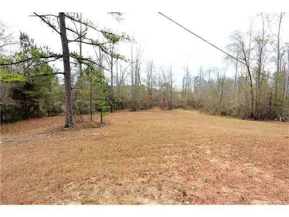 118 Old Colley Rd., Eclectic, AL 36024 Photo 68