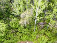 Home for sale: 20 la Grange Dr., Asheville, NC 28803