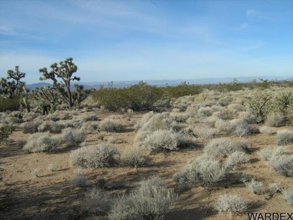 811 Kit Carson, Yucca, AZ 86438 Photo 13