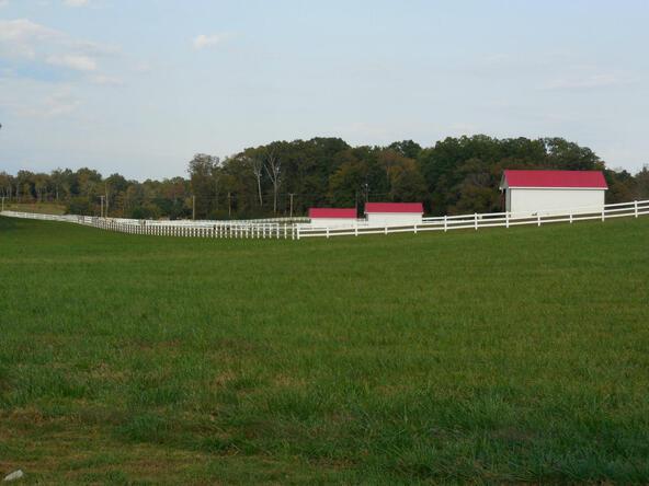 245 W. Shore Dr., Rockwood, TN 37854 Photo 29