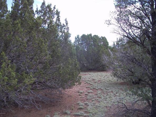 1142 E. Alimos Way, Williams, AZ 86046 Photo 8