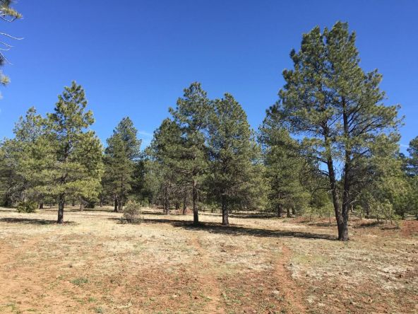 3602 E. Mountain Man Trail, Williams, AZ 86046 Photo 22