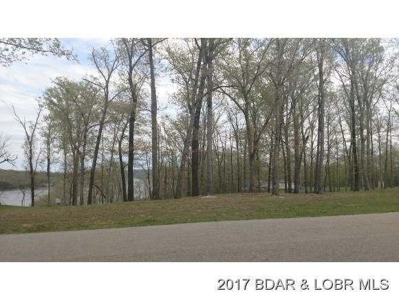 Lot P 12 Mission Bay Blvd., Camdenton, MO 65020 Photo 3