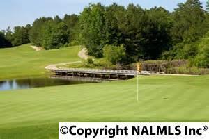 5116 Devonshire Dr., Owens Cross Roads, AL 35763 Photo 50