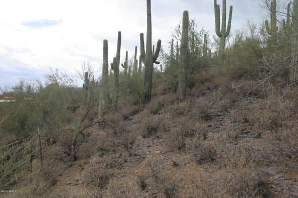 66xx E. Military Rd., Cave Creek, AZ 85331 Photo 8