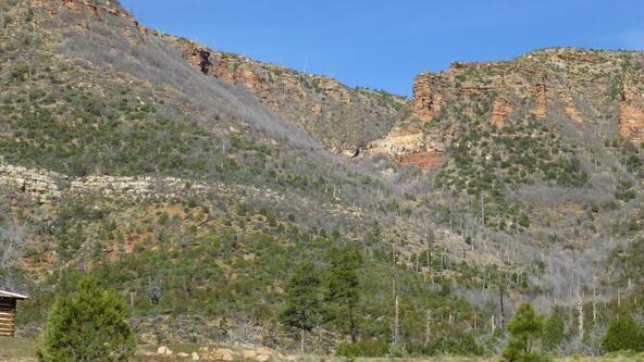 220 W. Zane Grey Cir., Christopher Creek, AZ 85541 Photo 46