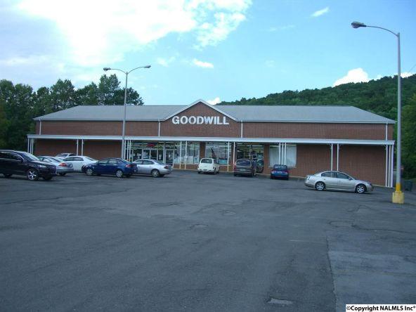 305 East Willow St., Scottsboro, AL 35768 Photo 3