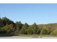 Home for sale: Comm Lots Deer Valley Lots 17, 18 & 20 Dr., Branson, MO 65616