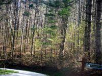 Home for sale: Lot #62 Morningside Dr., Tuckasegee, NC 28783