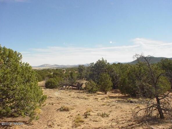 1d N. 8690, Concho, AZ 85924 Photo 21
