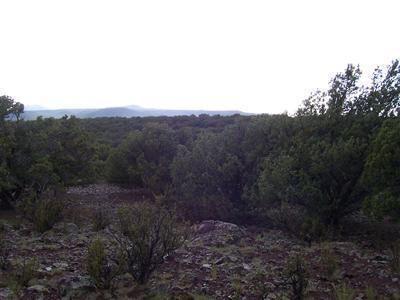 511 Martinez - Wwr Lot 511, Seligman, AZ 86337 Photo 18