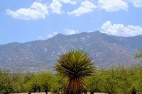 Home for sale: 15851 N. Studebaker, Tucson, AZ 85739