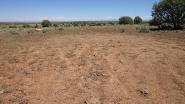 645 Westwood Ranch Lot 645, Seligman, AZ 86337 Photo 12